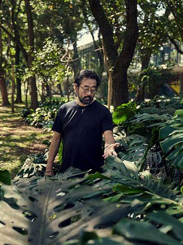 Ruy Tone - A Selva Em Primeiro Lugar